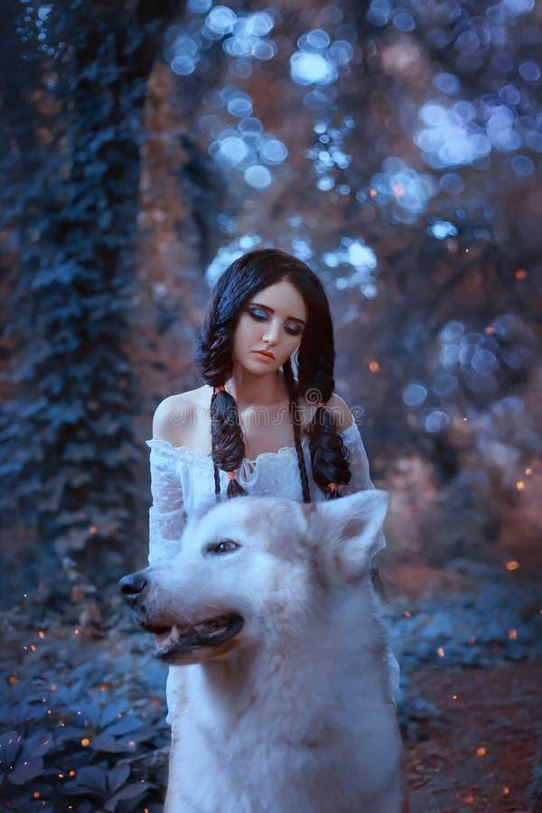 Η μαγική νεράιδα φορτώνει τον υπερήφανο λύκο του δάσους και τον οδηγά, το αρπακτικό ζώο παίρνει την πριγκήπισσα νεραιδών στη φωλι στοκ εικόνα με δικαίωμα ελεύθερης χρήσης