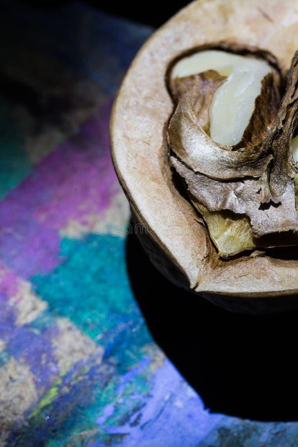 Η μακροεντολή, καρύδι, καφετί, λεπτομέρεια, σύσταση, λάμπει, σκιάζει, κατασκευασμένος, σχέδιο, μπλε στοκ φωτογραφίες