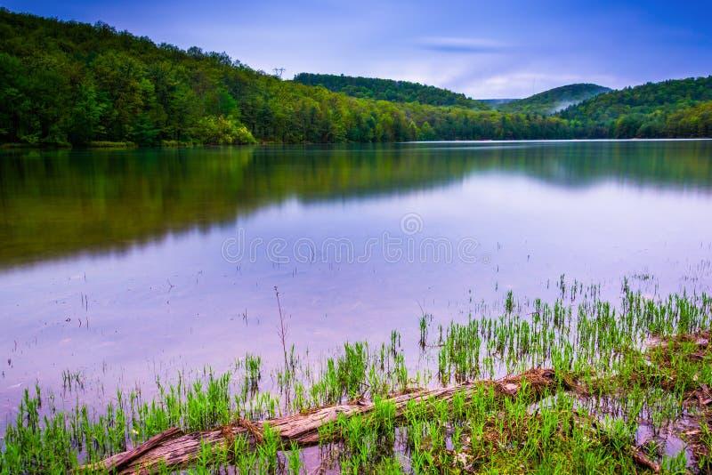 Η μακροχρόνια έκθεση του μακριού πεύκου τρέχει τη δεξαμενή στο κρατικό δάσος Michaux στοκ φωτογραφία με δικαίωμα ελεύθερης χρήσης