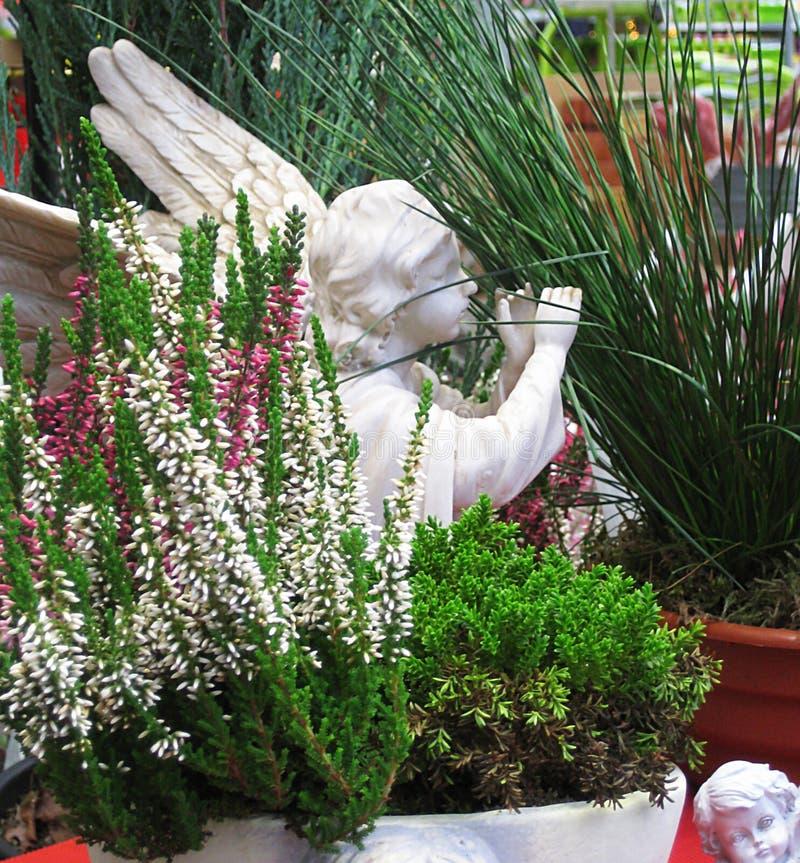 Η μακρο φωτογραφία με το διακοσμητικό υπόβαθρο των χειμερινών σε δοχείο λουλουδιών και τα ειδώλια αγγέλου στον κήπο σχεδιάζουν κα στοκ εικόνες