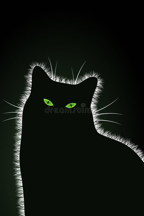 Η μαύρη γάτα στοκ εικόνα με δικαίωμα ελεύθερης χρήσης
