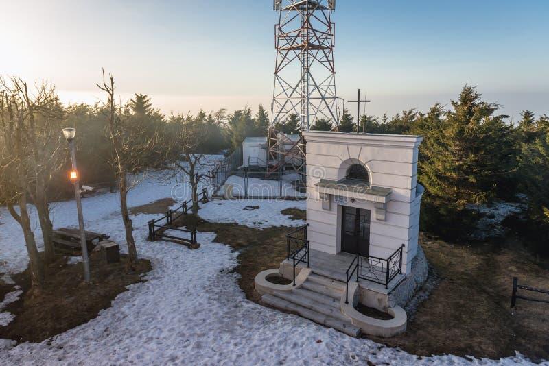 Η μεγάλη κουκουβάγια τοποθετεί στην Πολωνία στοκ φωτογραφία με δικαίωμα ελεύθερης χρήσης