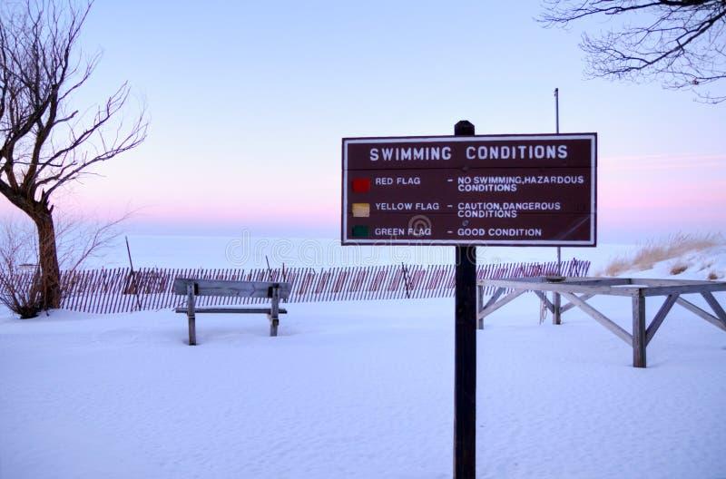 Η μεγάλη ημέρα για κολυμπά στοκ φωτογραφίες με δικαίωμα ελεύθερης χρήσης