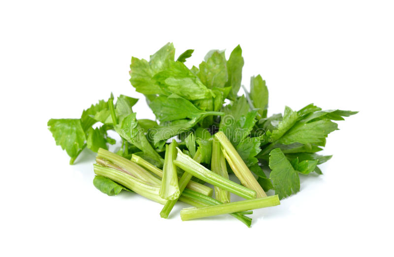 Η μερίδα έκοψε το πράσινο σέλινο στο λευκό στοκ εικόνα με δικαίωμα ελεύθερης χρήσης