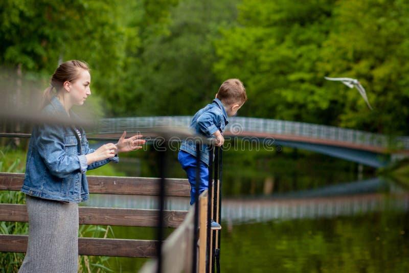 Η μητέρα δοκιμάζει ότι το παιδί θα περιέλθει στο νερό Ένα μικρό αγόρι αναρριχείται σε ένα κιγκλίδωμα γεφυρών στο πάρκο Η απειλή στοκ εικόνες με δικαίωμα ελεύθερης χρήσης