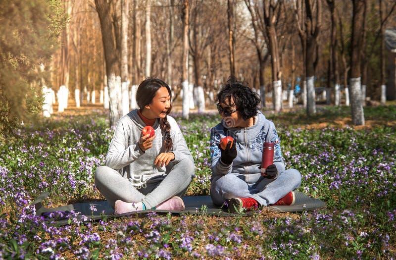 Η μητέρα και η κόρη τρώνε τα μήλα στο πάρκο στοκ εικόνες