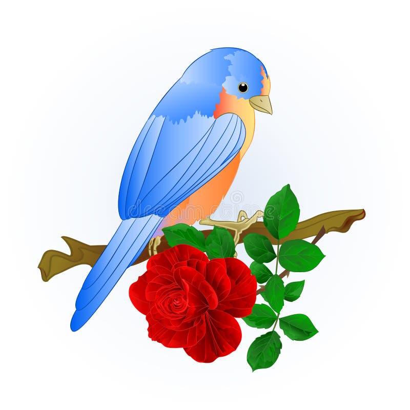 Η μικρή τσίχλα Bluebird songbirdon και κόκκινος αυξήθηκε εκλεκτής ποιότητας διανυσματική απεικόνιση υποβάθρου άνοιξη editable διανυσματική απεικόνιση