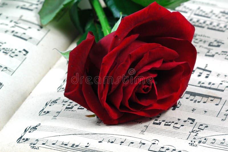 η μουσική κόκκινη αυξήθηκε φύλλο στοκ εικόνα με δικαίωμα ελεύθερης χρήσης