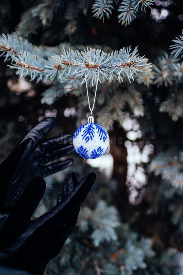 Η μπλε άσπρη σφαίρα Χριστουγέννων με παραδίδει τα μαύρα γάντια στενό σε επάνω κλάδων δέντρων έλατου στοκ εικόνα