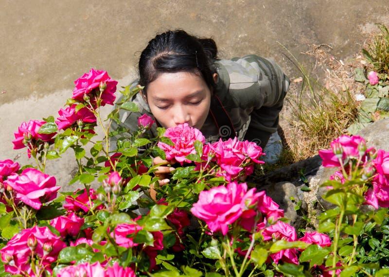 Η μυρωδιά γυναικών το άνθος του κοκκίνου αυξήθηκε στοκ εικόνες