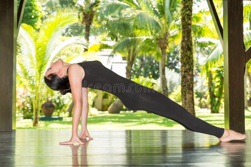 Η νέα γυναίκα ασκεί τη γιόγκα και pilates στη φύση στοκ εικόνες