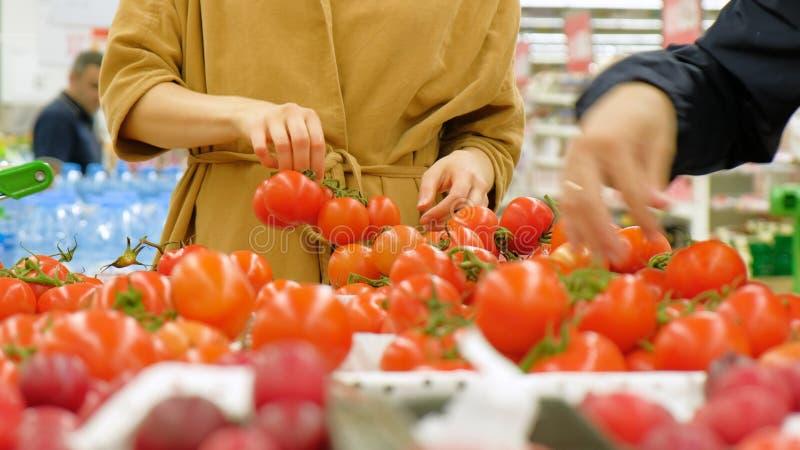 Η νέα γυναίκα στο καφετί χέρι παλτών παίρνει τις κόκκινες φρέσκες ντομάτες στοκ φωτογραφία με δικαίωμα ελεύθερης χρήσης