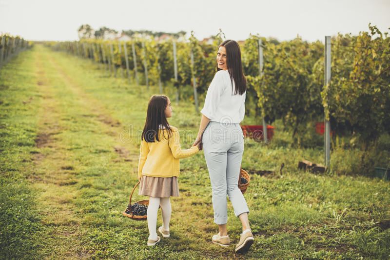 Η νέα μητέρα και το χαριτωμένο κορίτσι της έχουν τη διασκέδαση στον αμπελώνα φθινοπώρου στοκ εικόνες