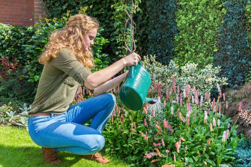 Η νέα ολλανδική γυναίκα με το πότισμα μπορεί επάνω από τα λουλούδια στοκ εικόνα