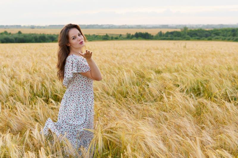 Η νέα όμορφη γυναίκα στο φόρεμα θέτει στον τομέα σίτου στοκ εικόνες με δικαίωμα ελεύθερης χρήσης