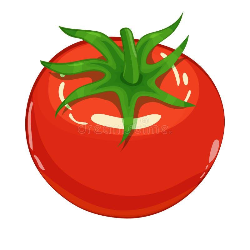Η ντομάτα απομόνωσε την ενιαία απλή απεικόνιση κινούμενων σχεδίων στοκ εικόνα με δικαίωμα ελεύθερης χρήσης
