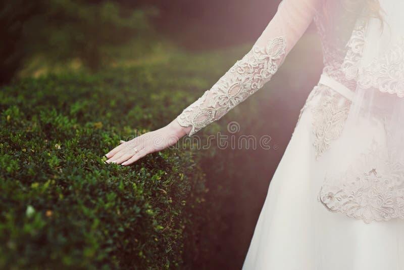 Η νύφη αγγίζει τον πράσινο θάμνο στο πάρκο στοκ εικόνες