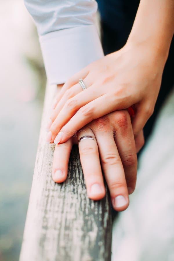 Η νύφη και ο νεόνυμφος αγαπούν η μια την άλλη Κράτημα των χεριών τους στοκ εικόνες