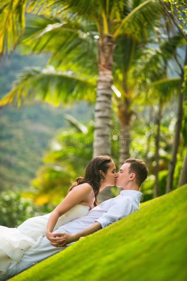 Η νύφη και ο νεόνυμφος φιλούν ήπια στην πράσινη χλόη ενάντια στους φοίνικες το καλοκαίρι στοκ εικόνα