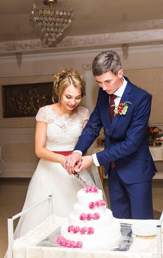 Η νύφη ομορφιάς και ο όμορφος νεόνυμφος κόβουν ένα γαμήλιο κέικ στοκ φωτογραφία με δικαίωμα ελεύθερης χρήσης