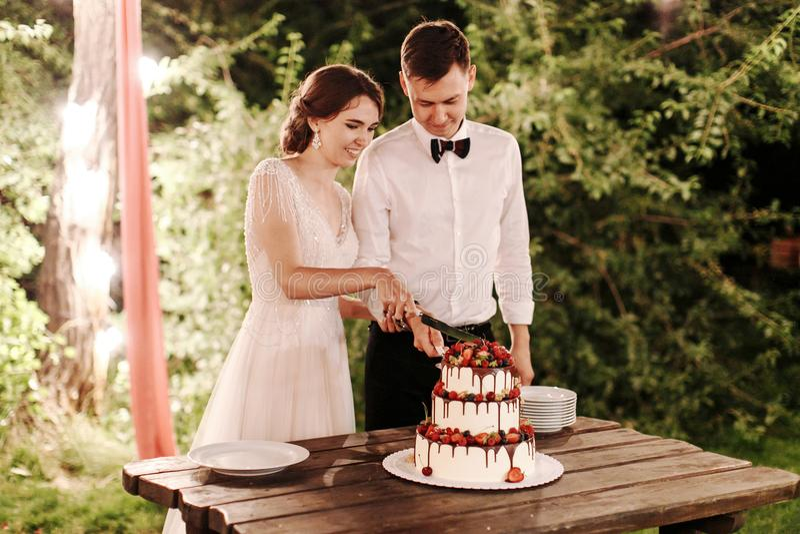 Η νύφη το λευκό και ο νεόνυμφος έκοψε το γαμήλιο κέικ κάτω από ένα μεγάλο δέντρο με τις φωτεινές γιρλάντες φω'των ημέρα γάμου και στοκ φωτογραφίες