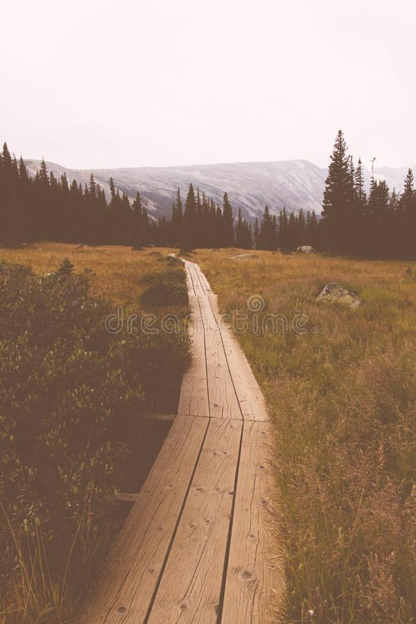Η ξύλινη διάβαση ενσωμάτωσε έναν μεγάλο πράσινο τομέα με τα δέντρα και τους λόφους πεύκων στο υπόβαθρο στοκ φωτογραφία με δικαίωμα ελεύθερης χρήσης