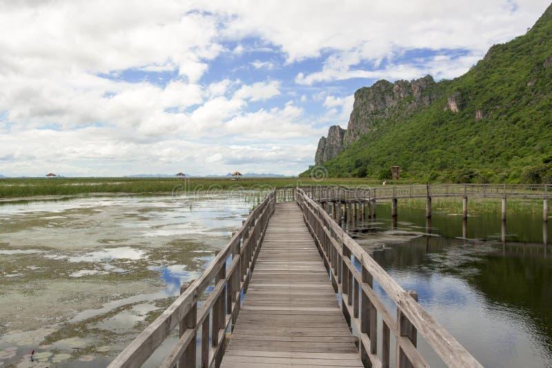 Η ξύλινη γέφυρα στοκ φωτογραφία με δικαίωμα ελεύθερης χρήσης