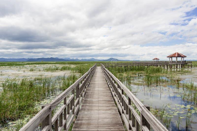 Η ξύλινη γέφυρα στοκ εικόνα με δικαίωμα ελεύθερης χρήσης