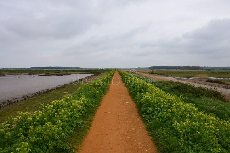 Η οδική μπροστά ευθεία διάβαση στο Norfolk στοκ εικόνα