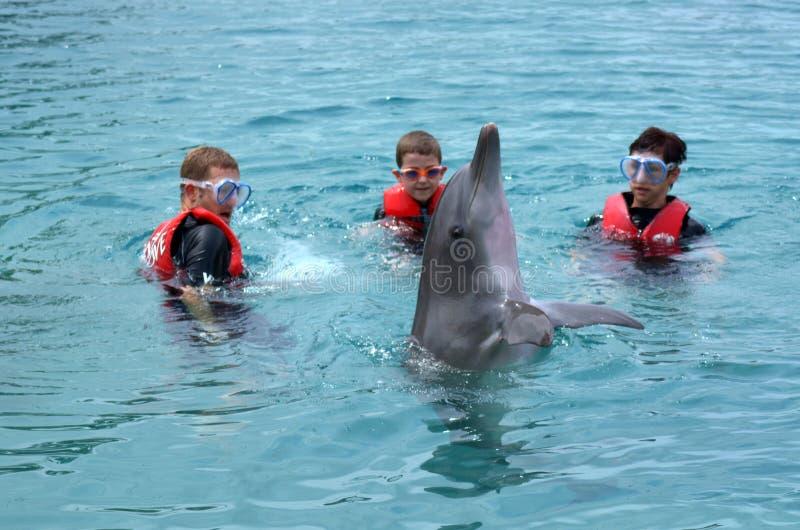 Η οικογένεια αλληλεπιδρά με το δελφίνι στοκ φωτογραφίες με δικαίωμα ελεύθερης χρήσης
