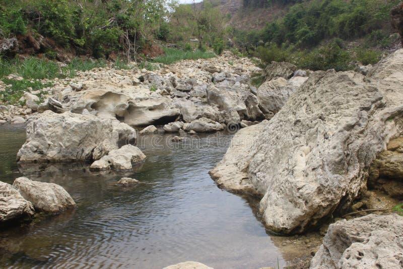 η ομορφιά ενός αμόλυντου ποταμού στοκ εικόνα