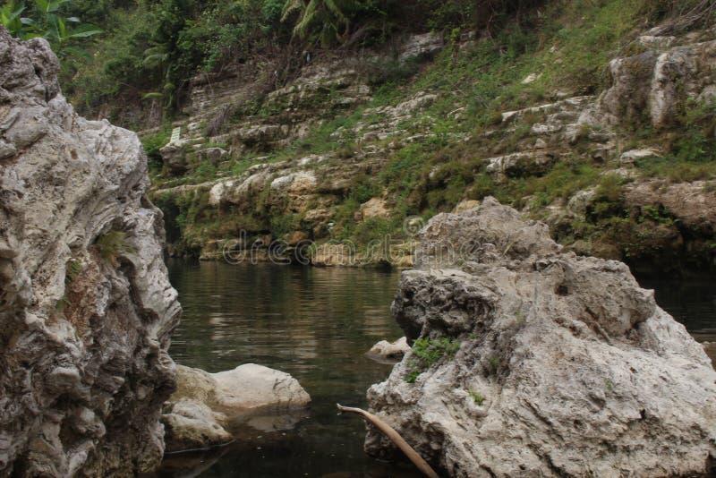 η ομορφιά ενός αμόλυντου ποταμού στοκ φωτογραφία