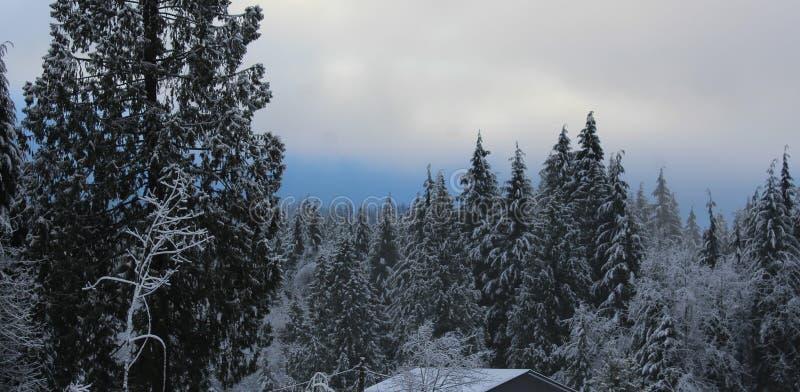 Η ομορφιά ενός κλασικού καναδικού χειμώνα στοκ εικόνες