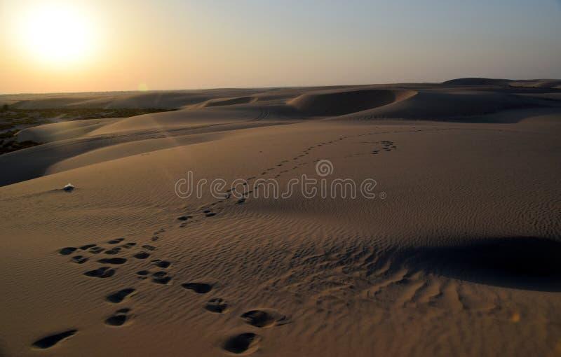 Η ομορφιά της ερήμου της Αραβίας ως ήλιο αρχίζει να θέτει, Dammam, ανατολική επαρχία, βασίλειο της Σαουδικής Αραβίας στοκ φωτογραφία με δικαίωμα ελεύθερης χρήσης