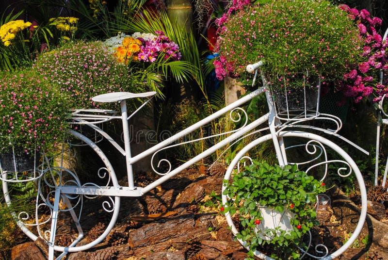 Η ομορφιά της φύσης στον κήπο στοκ φωτογραφία με δικαίωμα ελεύθερης χρήσης