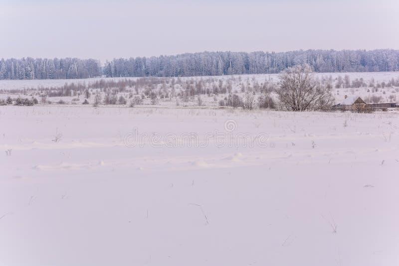 Η ομορφιά της φύσης το χειμώνα στοκ φωτογραφία με δικαίωμα ελεύθερης χρήσης
