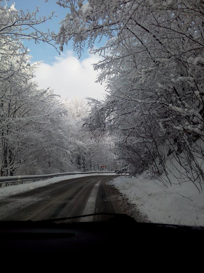Η ομορφιά του χειμώνα στοκ εικόνες