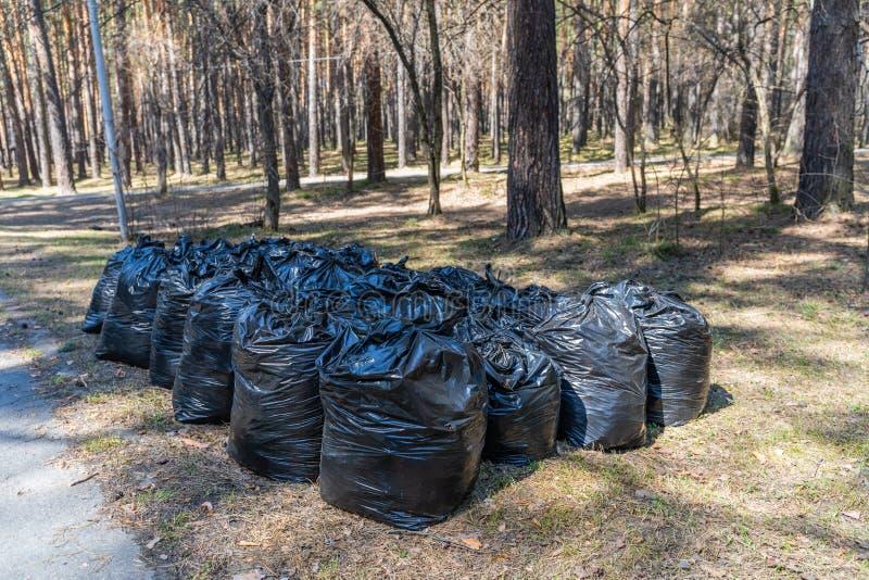 Η πάλη των σκουπιδιών είναι ένα παγκόσμιο πρόβλημα Πού να τεθούν αυτές οι τσάντες απορριμάτων τώρα στοκ εικόνες με δικαίωμα ελεύθερης χρήσης