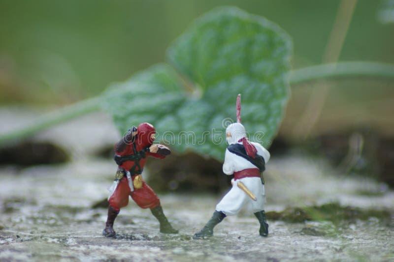 Η πάλη του Ninja στοκ φωτογραφίες με δικαίωμα ελεύθερης χρήσης