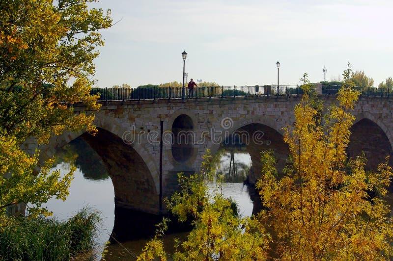 Η πέτρινη γέφυρα Zamora στοκ φωτογραφίες με δικαίωμα ελεύθερης χρήσης