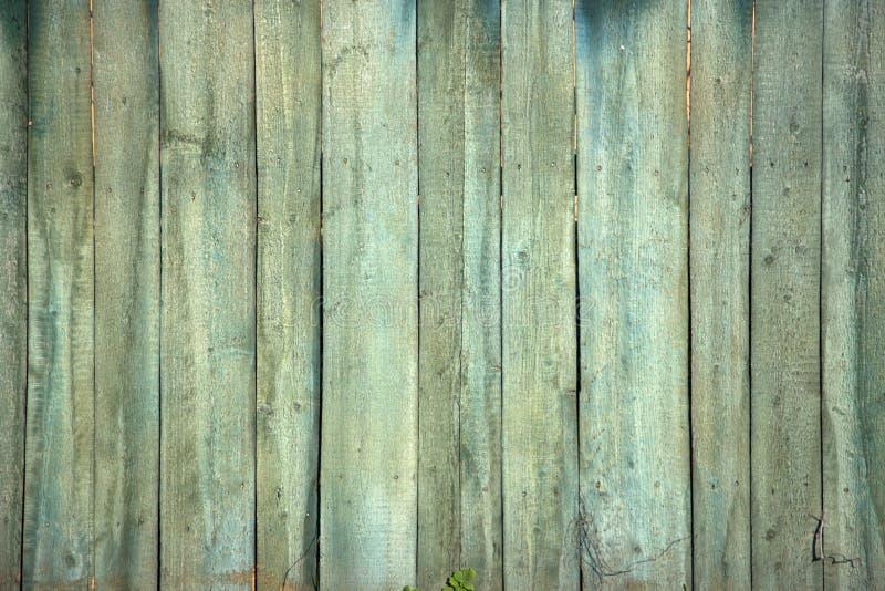 Η παλαιά πράσινη ξύλινη σύσταση με τα φυσικά σχέδια στοκ φωτογραφία