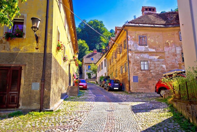 Η παλαιά πόλη του Λουμπλιάνα η ανώτερη διάβαση πεζών κωμοπόλεων στοκ εικόνα με δικαίωμα ελεύθερης χρήσης