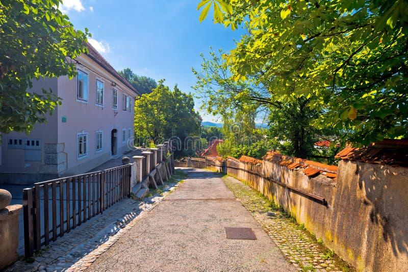 Η παλαιά πόλη του Λουμπλιάνα η ανώτερη διάβαση πεζών κωμοπόλεων στοκ εικόνα