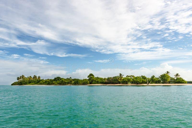 Η πανοραμική άποψη του κανενός επανδρώνει το έδαφος στο τροπικό νησί του Τομπάγκο Δυτικές Ινδίες στοκ εικόνα με δικαίωμα ελεύθερης χρήσης