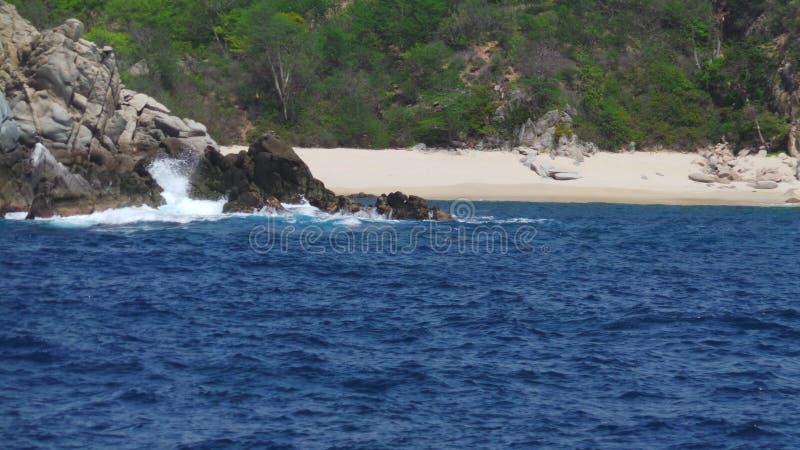 Η παραλία λικνίζει το ωκεάνιο δαιμόνιο θάλασσας στοκ φωτογραφία με δικαίωμα ελεύθερης χρήσης