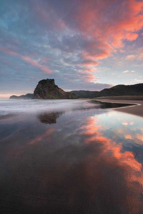 Η παραλία Piha είναι μια παράκτια τακτοποίηση στη δυτική ακτή της περιοχής του Ώκλαντ στη Νέα Ζηλανδία Είναι μια από τη δημοφιλέσ στοκ εικόνα