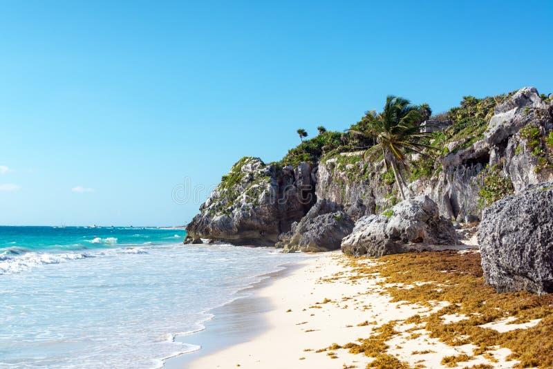 η παραλία εγκατάλειψε τρ στοκ φωτογραφίες