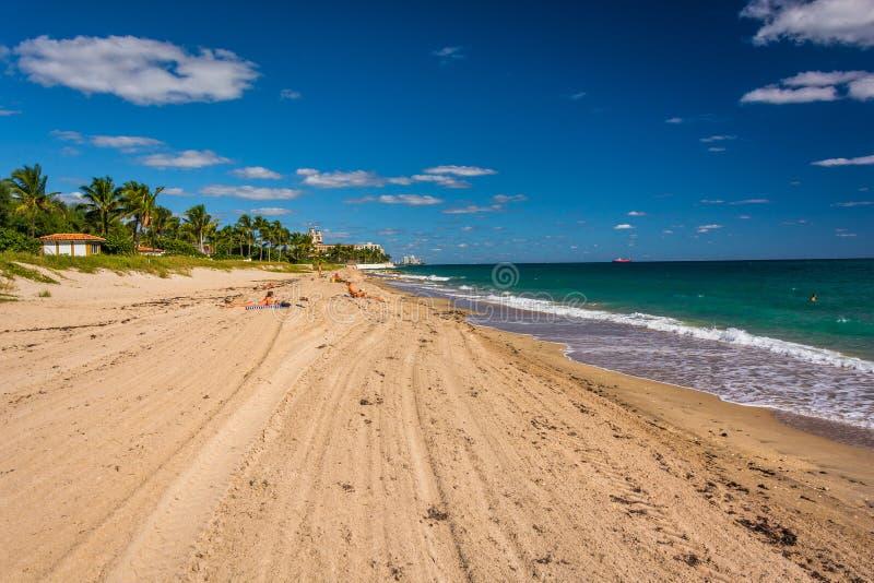 Η παραλία στο Palm Beach, Φλώριδα στοκ εικόνα