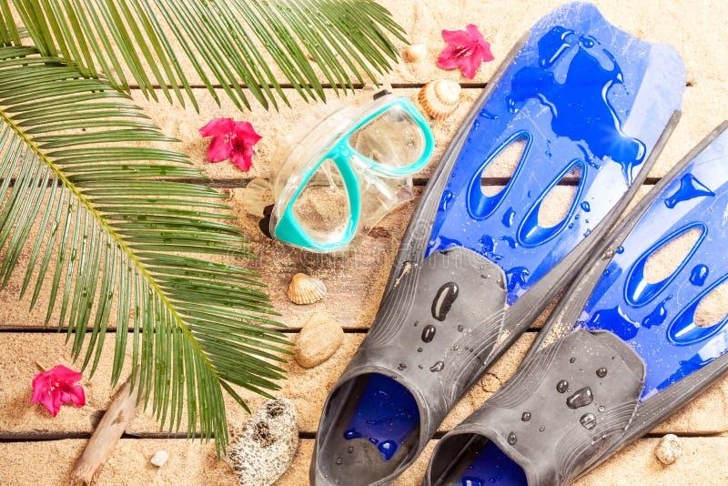 Η παραλία, φύλλα φοινίκων, άμμος, πτερύγια, προστατευτικά δίοπτρα και κολυμπά με αναπνευτήρα στοκ εικόνες με δικαίωμα ελεύθερης χρήσης