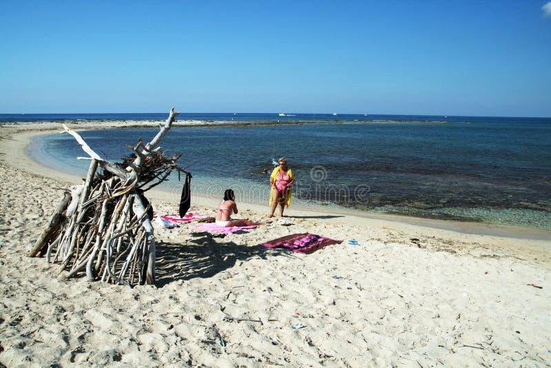 Η παραλία rubbit στοκ εικόνα με δικαίωμα ελεύθερης χρήσης